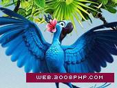 ANDROS - RIO卡通鸟类网站
