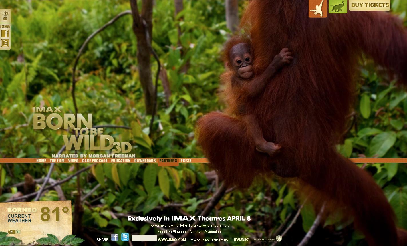 美国2011野生动物纪录片《天生狂野born