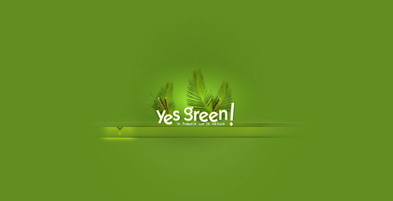 意大利yesgreen绿色环保盘子杯子