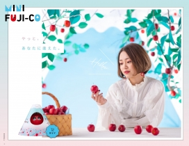 MINI FUJI-CO小巧美味的苹果故事!