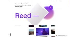 比利时Reed设计机构!